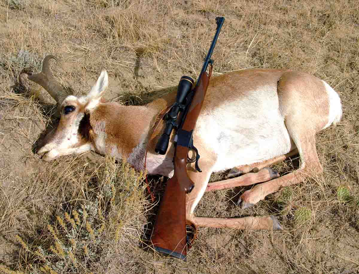 Traditional rifles can be chambered for cartridges that work well with high-BC bullets. This Wyoming pronghorn was shot at around 350 yards with a Ruger No. 1A rechambered to .280 Ackley Improved.