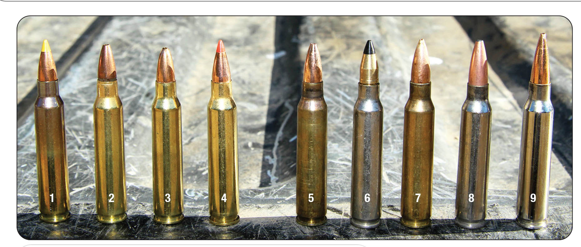 Factory ammunition tested included: 1) SIG SAUER 40-grain Varmint & Predator Tip, 2) Remington UMC 45 JHP, 3) American Eagle 50 JHP and 4) Hornady 55 V-MAX Varmint Express. Handloads included: 5) Barnes 50 Varmint Grenade, 6) Cutting Edge ESP Raptor, 7) Rocky Mountain Reloading 69 3-Gun Hunter, 8) Speer 75 Gold Tip and 9) Berger 90-grain VLD Target.
