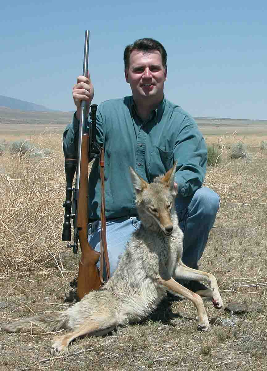 Tim Janzen shot this coyote with a 6mm Varmint Grenade handload.