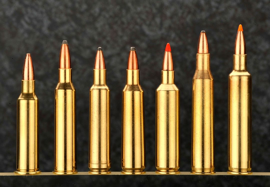 Some varmint cartridges to consider the .220 Swift included from left to right; .219 Donaldson Wasp, .225 Winchester, .224 Weatherby Magnum, .22/250 Remington, .22/250 Remington Ackley Improved, .220 Swift and the .220 Weatherby Rocket.